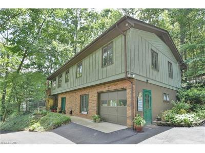 Asheville Single Family Home For Sale: 3 Spring Cove Terrace