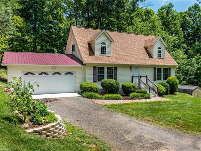Mills River Single Family Home Under Contract-Show: 84 Varnadore Drive