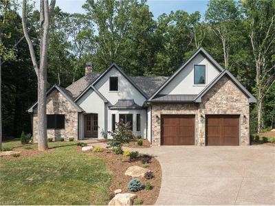 Asheville Single Family Home For Sale: 9 Waterside Drive