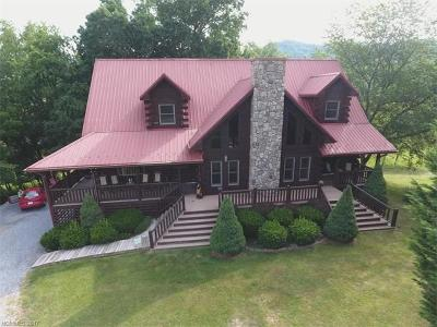 Waynesville Single Family Home For Sale: 42 Chinaberry Court