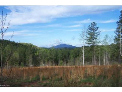 Mill Spring Residential Lots & Land For Sale: Tract 3 County Line Road #3