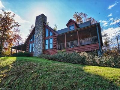 Waynesville Single Family Home For Sale: 142 Honeysuckle Drive