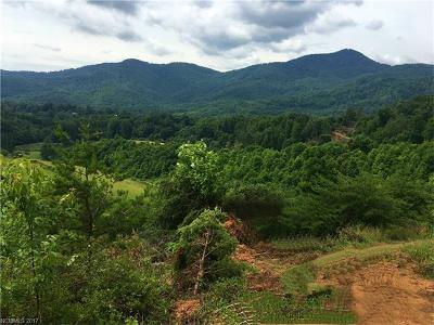 Candler NC Residential Lots & Land For Sale: $3,950,000