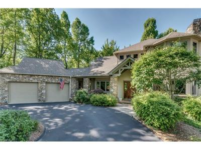 Hendersonville Single Family Home For Sale: 84 Tall Poplar Summit #259