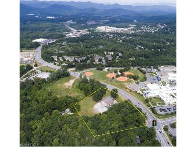 Asheville NC Commercial For Sale: $3,400,000