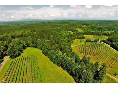 Rutherfordton Residential Lots & Land For Sale: 3043 John Watson Road