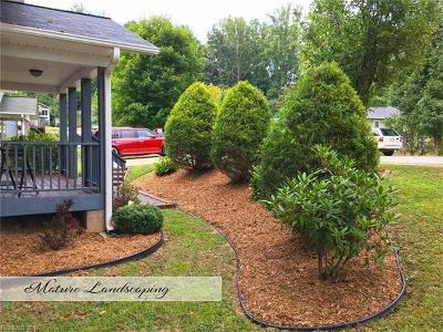 Asheville Single Family Home For Sale: 138 Warren Haynes Drive