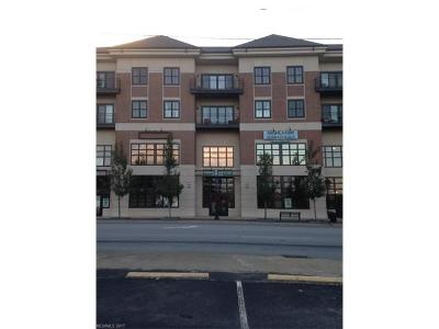 Transylvania County Condo/Townhouse For Sale: 29 French Broad Street #306