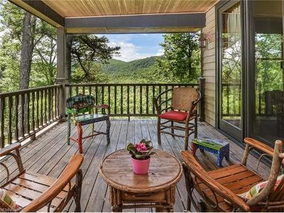 Pisgah Forest Single Family Home For Sale: 207 Firefly Lane
