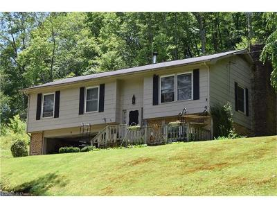 Transylvania County Single Family Home For Sale: 31 Trout Haven Lane