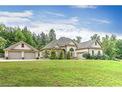 Tryon Single Family Home For Sale: 113 Bridge Lane