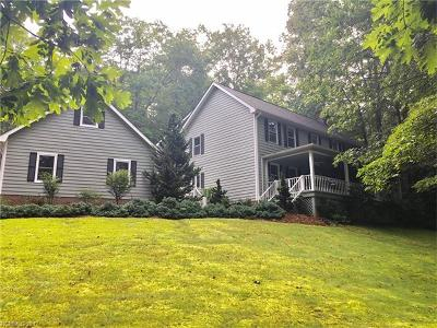 Pisgah Forest Single Family Home For Sale: 171 Aberdeen Lane