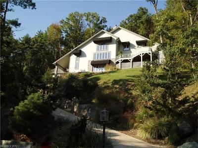 Asheville Single Family Home For Sale: 92 Robinhood Road
