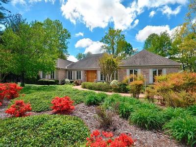 Hendersonville Single Family Home For Sale: 10 Thornapple Drive
