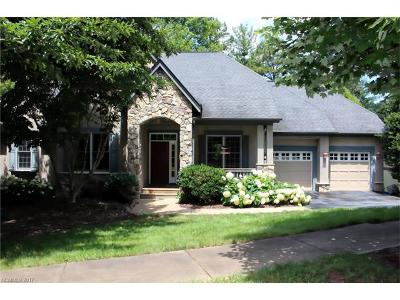 Brevard Single Family Home For Sale: 193 Camptown Road #46
