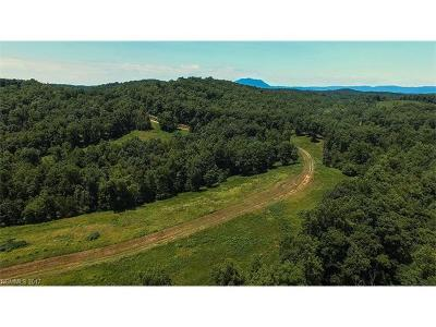 Rutherfordton Residential Lots & Land For Sale: 99999 Polk County Line Road
