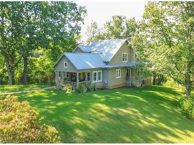 Transylvania County Single Family Home For Sale: 262 Brown's Hidden Valley Drive
