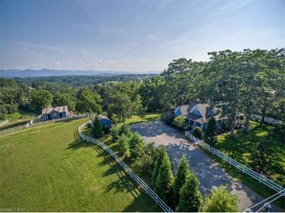 Weaverville Single Family Home For Sale: 637 Jupiter Road