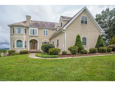 Mills River Single Family Home For Sale: 53 Mill Crest Drive