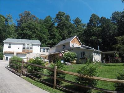 Asheville Single Family Home Under Contract-Show: 7 Walter Morgan Drive