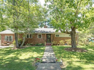 Asheville Single Family Home For Sale: 221 School Road