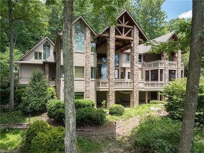 Hendersonville Single Family Home For Sale: 44 Falls Lane