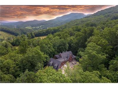 Candler Single Family Home For Sale: 225 Smith Cove Road
