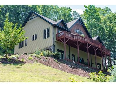 Weaverville Single Family Home For Sale: 70 Hawks Pointe Lane