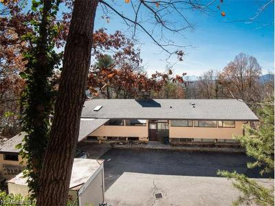 Asheville Single Family Home For Sale: 3 Dry Ridge Road