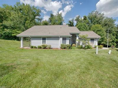 Waynesville Condo/Townhouse For Sale: 129 Meadowind Court #119
