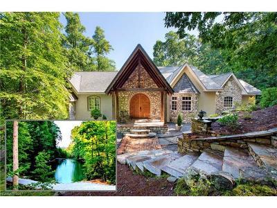 Hendersonville Single Family Home For Sale: 3999 Laurel Park Highway