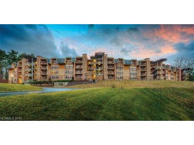 Asheville Condo/Townhouse For Sale: 216 Bowling Park Road #216