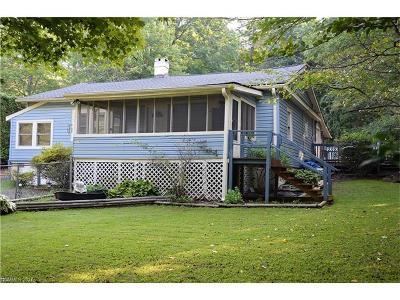 Black Mountain Single Family Home For Sale: 225 Buckner Road