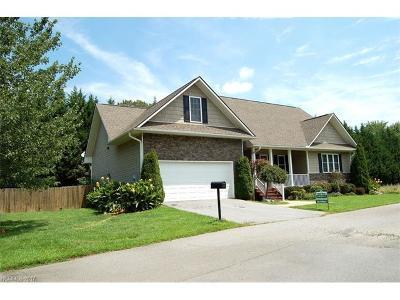 Etowah Single Family Home For Sale: 234 Springfield Meadow Drive