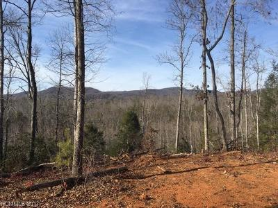 Lake Lure Residential Lots & Land For Sale: 3991 Bills Creek Road