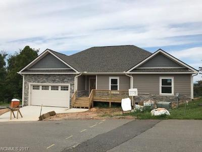 Weaverville Single Family Home Under Contract-Show: 23 Avery Nicole Drive #30