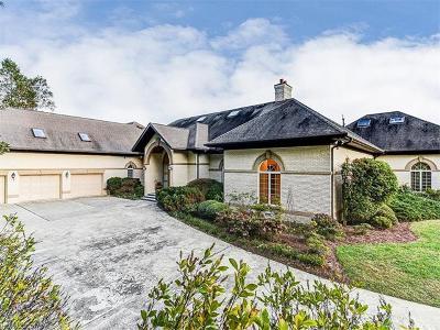 Hendersonville Single Family Home For Sale: 813 Rickel Drive