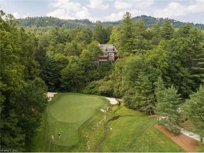 Hendersonville Single Family Home For Sale: 307 Pine Forest Trace