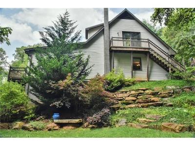 Asheville Single Family Home For Sale: 55 Mountain Site Lane