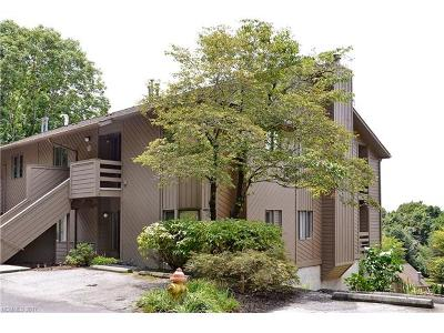 Asheville Condo/Townhouse For Sale: 305 Piney Mountain Drive #F2