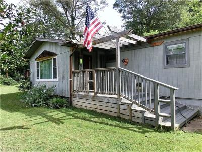 Asheville Single Family Home For Sale: 2 Botany Drive