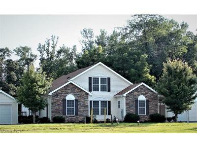 Hendersonville Multi Family Home For Sale: 27 Turnabout Lane