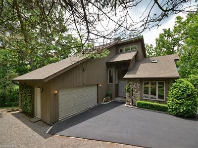 Black Mountain Single Family Home For Sale: 53 Timber Park Drive