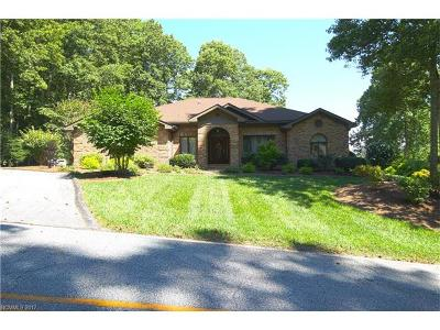 Hendersonville Single Family Home For Sale: 420 Ledgeview Drive #45