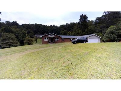 Asheville Single Family Home For Sale: 78 Concord Road