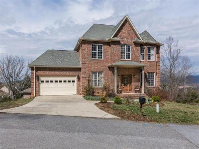 Asheville Single Family Home For Sale: 53 Timberwood Drive