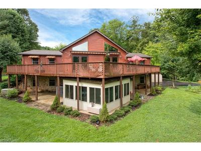 Weaverville Single Family Home For Sale: 382 Cove Creek Lane