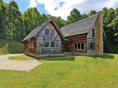 Hot Springs Single Family Home For Sale: 19997 Nc 209 Highway