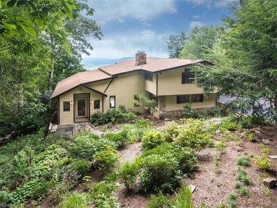 Asheville Single Family Home For Sale: 112 Big Spring Drive