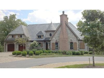 Asheville Single Family Home For Sale: 20 Snap Dragon Court #2